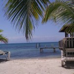 Parting Thoughts from Utila