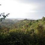 The good life of the Ecuadorian coast