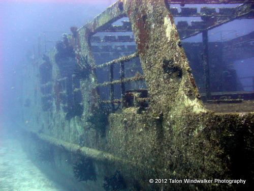 Tigger & Wreck Diving