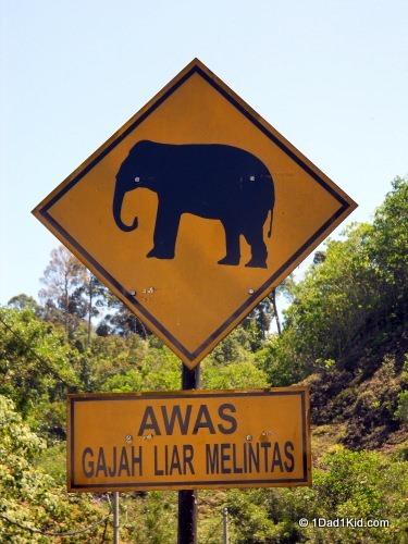 travel tips, malaysia