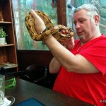 Budapest Zoo Cafe, a real treat for animal lovers