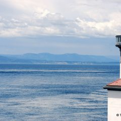 Don't Miss Washington's San Juan Islands
