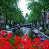 Amsterdam Surprised Me